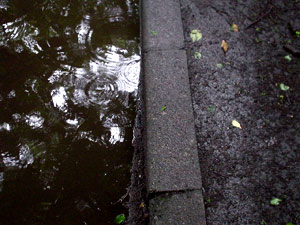 Photo: 雨の径 2003. Tokyo, Japan, Sony Cyber-shot U10, 5mm(33mm)/F2.8, JPEG.