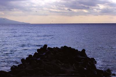 Photo: 突堤 2006. Izu, Japan, Contax RX, Carl Zeiss Vario-Sonnar T* 35-135mm/F3.3-4.5(MM), Kodak EBX