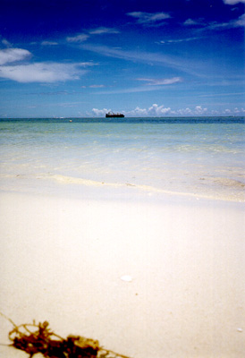 Photo: 1998. Saipan, CONTAX T2 Carl Zeiss T* Sonnar 2.8/38