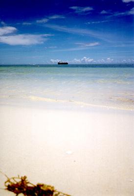 Photo: 1998. Saipan, CONTAX T2 Carl Zeiss T* Sonnar 2.8/38