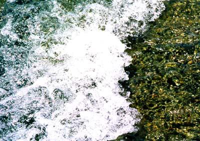 Photo: 2000. Tamagawa, Japan, Nikon F100, 35-105mm F3.5-4.5D(IF), Kodak