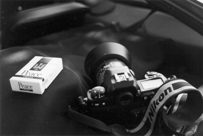 Photo: Nikon F100 and Peace Lights, Copyright(C) 2000 Site503.