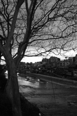 """Photo: """"Kamo river in Winter."""""""